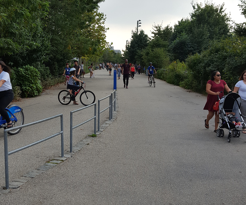 bike and pedestrian path in park with trees to the right and left and a metal fence going down the center. A small blue post delineates which side of the path is for bikes and which side is for people.